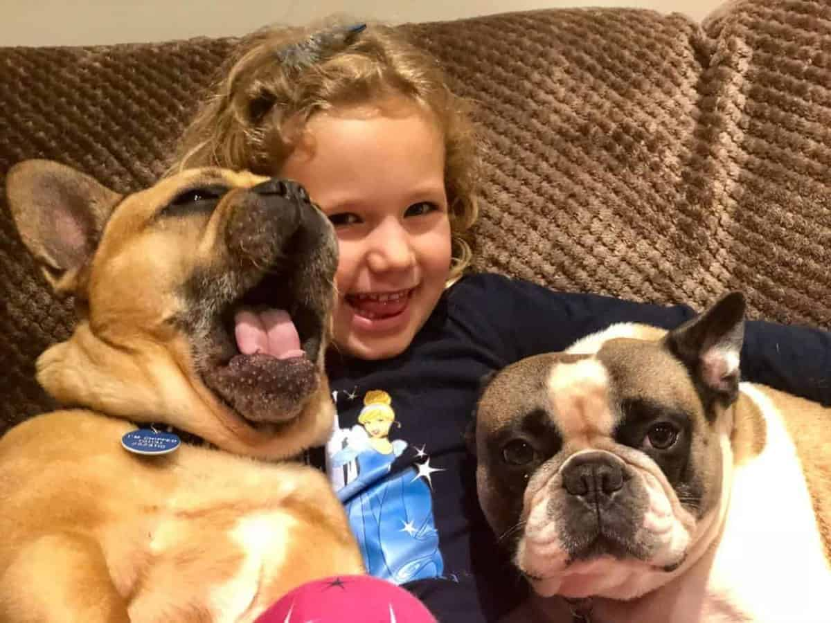Things To Know Before Buying a French Bulldog: Girls and French Bulldogs