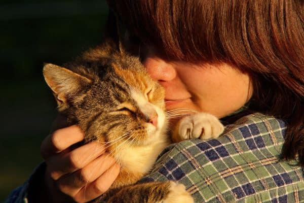 Easy Ways to Get Along Better With Your Cat