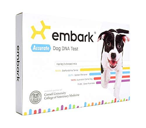 Best DNA test kit for a dog