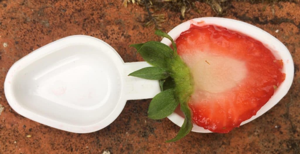 A small 2 lb rabbit can only eat a teaspoon of strawberry per day