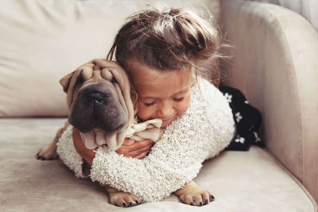 Things dogs hate: Dog being hugged by a child