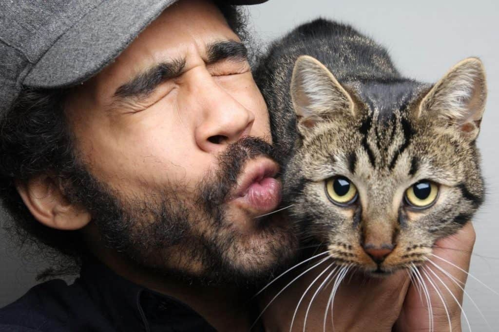 Cat reunited with previous owner and looking confused