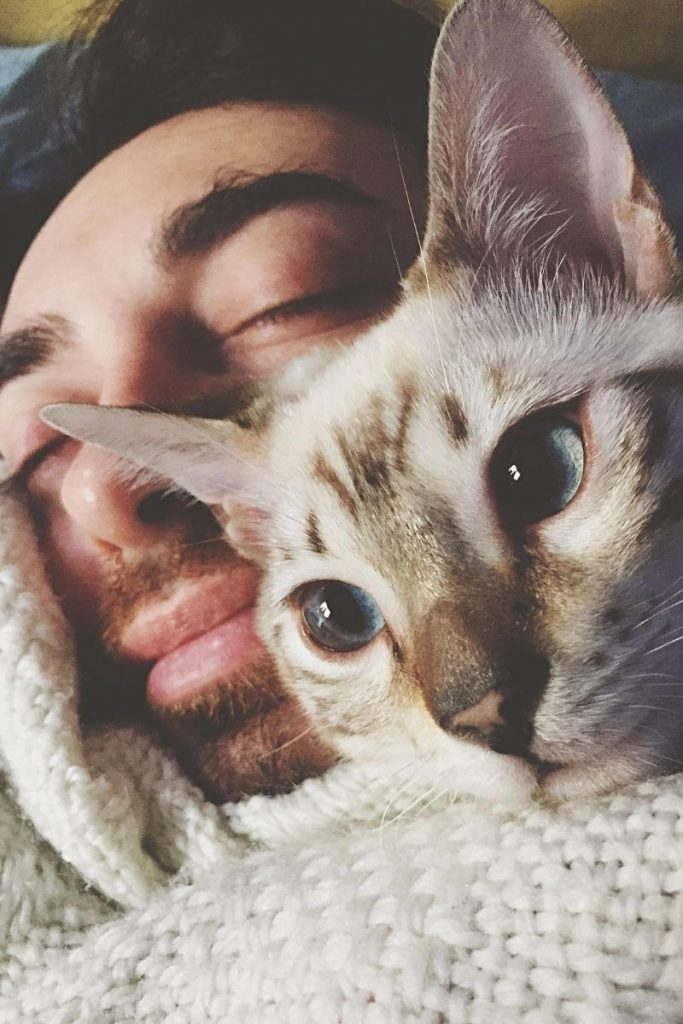 A cat with its face next to sleeping owner.
