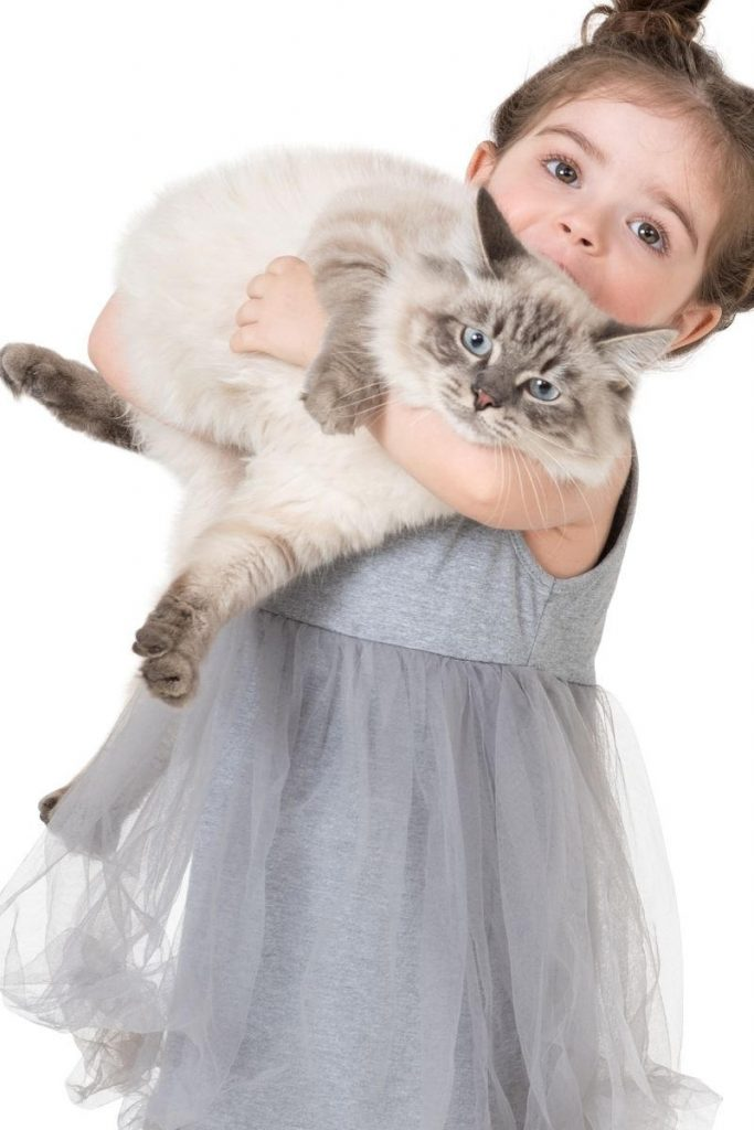 A cat looking unhappy about being held by a child.