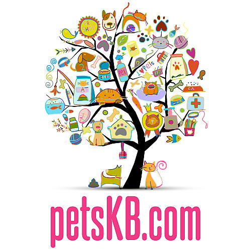 The Pets KB